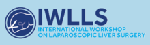 International Workshop on Laparoscopic Liver Surgery